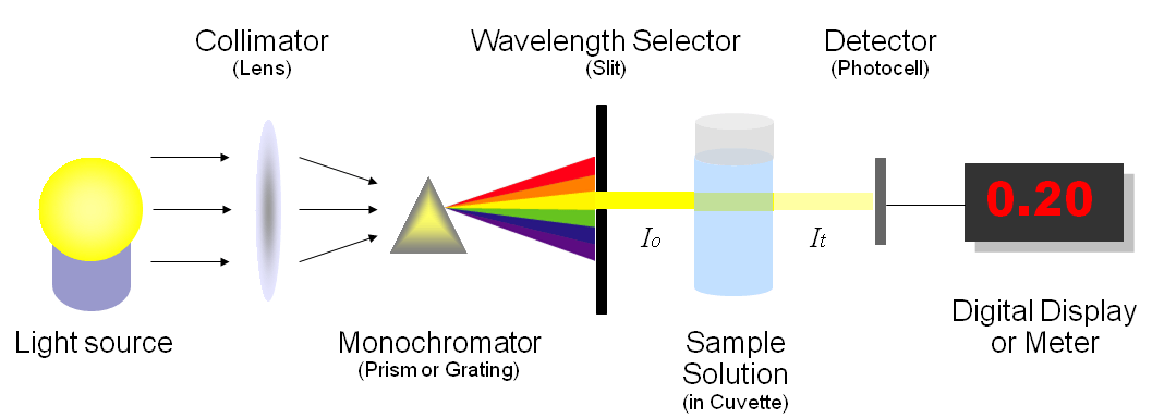 What Does a Spectrometer Measure?